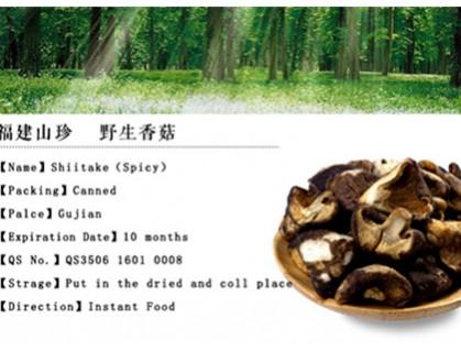 Shiitake Chip