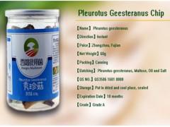 Pleurotus Geesteranus Chip