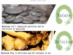 Mushroom Chip